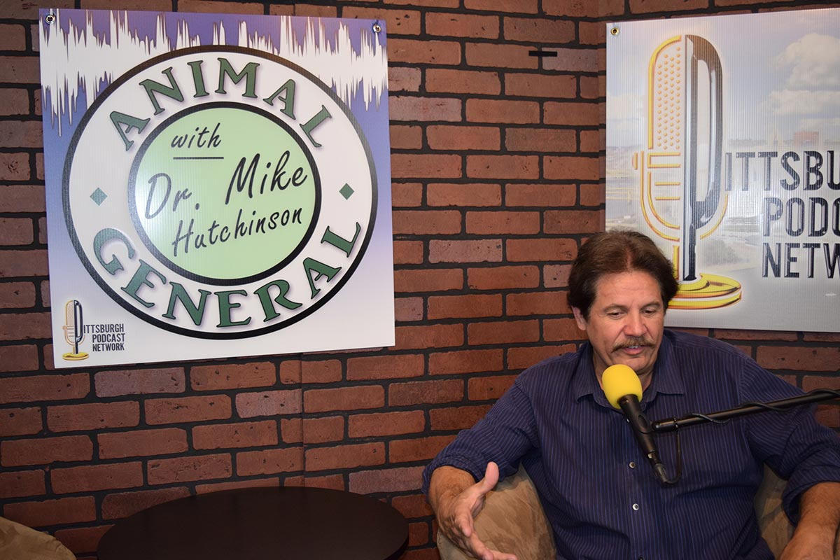 Animal General Podcast | A Different Spin to Pet Nutrition