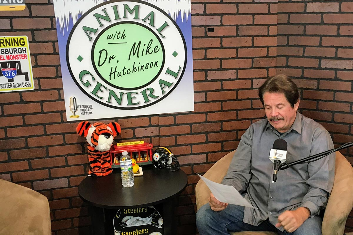 Animal General Podcast | Winter With Pets